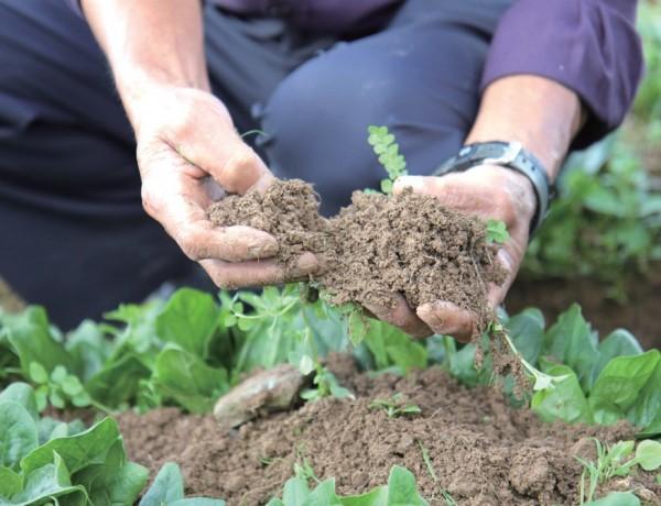 글로벌 푸드 시스템의 한계를 극복하고 먹거리, 에너지, 기후, 생태계를 지속가 능하게 할 수 있는 소농에 대한 지원 정책이 필요하다.