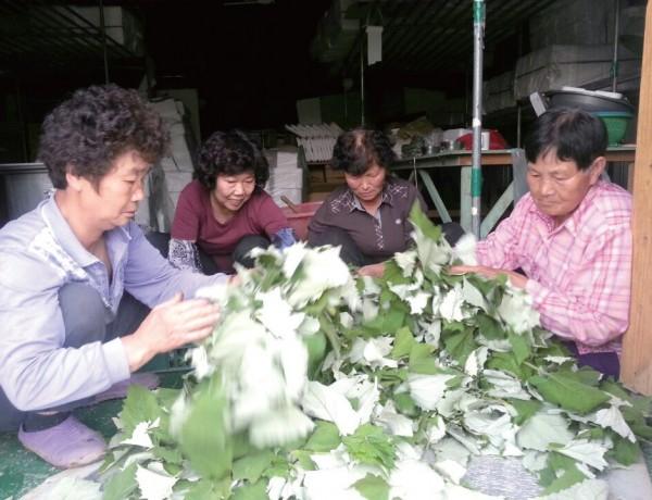 꾸러미사업을 통해 여성 농민 스스로 지위와 역할을 깨닫고, 친환경 농업의 중 요성을 공감하고 있다.