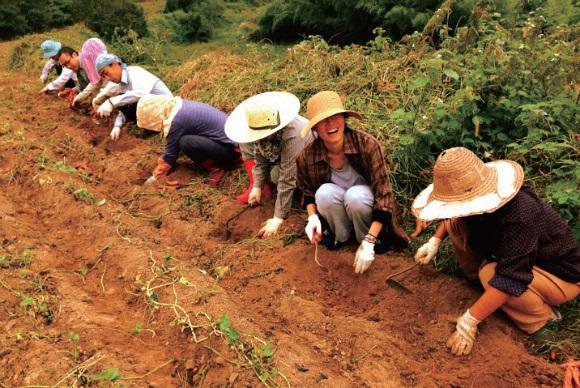 미세마을에서는 농촌이주를 꿈꾸는 청년이 모여 함께 농사짓는다. Ⓒ정혜성
