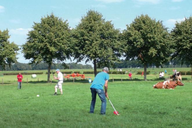 네덜란드 Weenink 관광목장에서는 목장과 스포츠를 연계한 프로그램으로 관 광객을 불러모은다.