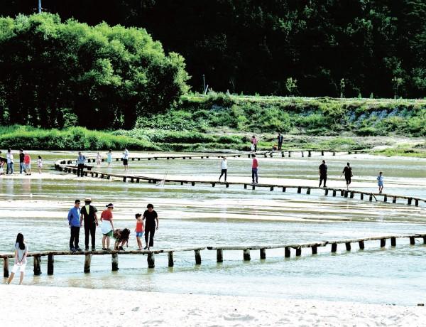 무섬외나무다리는 마을과 바깥세상을 이어주는 유일한 통로였다. 사진·박중춘