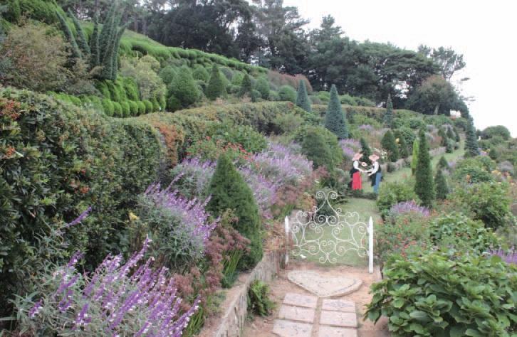 외도에서는 조화롭게 펼쳐진 1천여 종의 다양한 식물들을 만날 수 있다.
