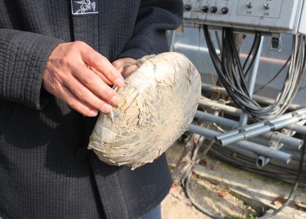 김상식 씨는 농업에서 돈들이지 않는 아이디어를 많이 낸다. 사진은 채소 수확하는 노인들이 편하게 앉을 수 있도록 만든 간이의자다.