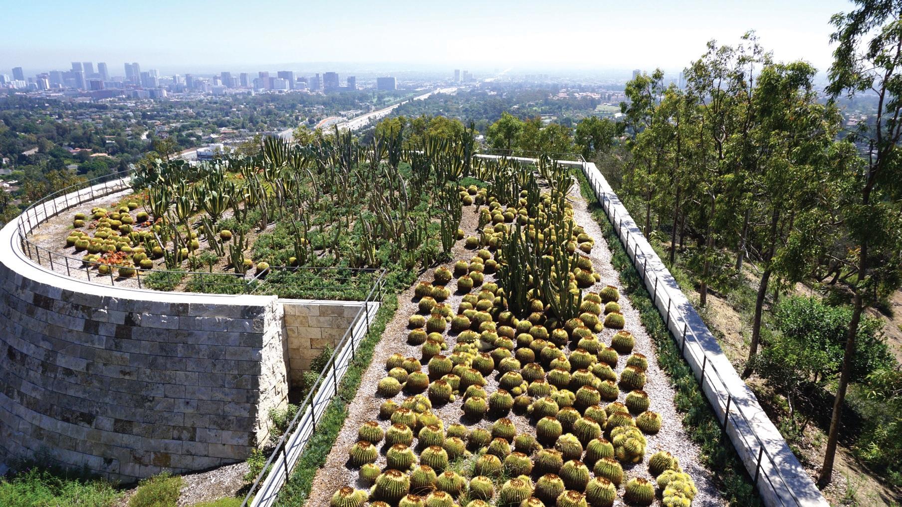 곳곳에 다양한 식물이 자생하는 아름다운 정원도 있다.
