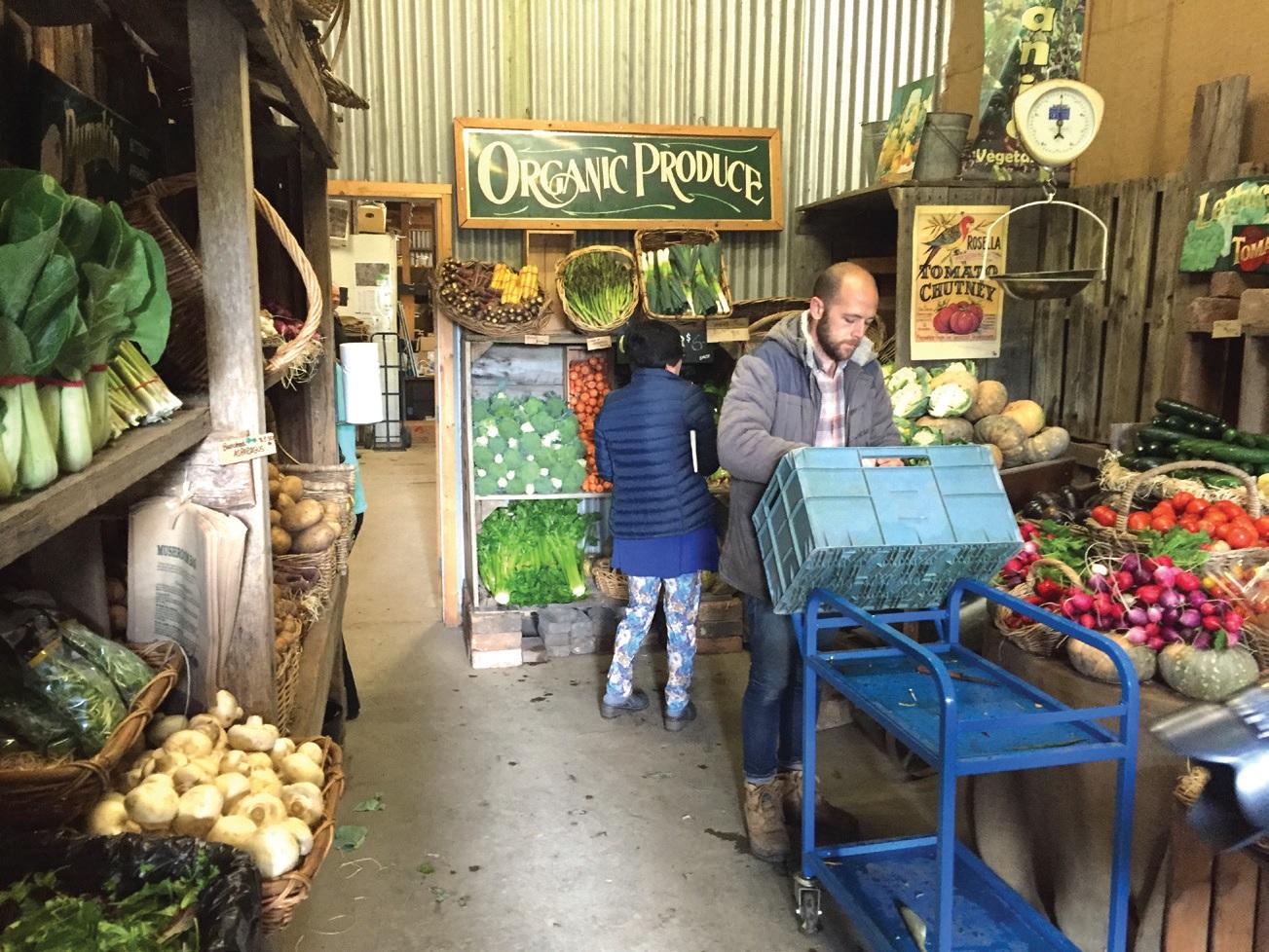 5대째 농사를 짓고 있는 웨인 씨는 파머스마켓 출점 경험에서 자신감을 얻어 농장 안에 매장도 함께 운영한다.