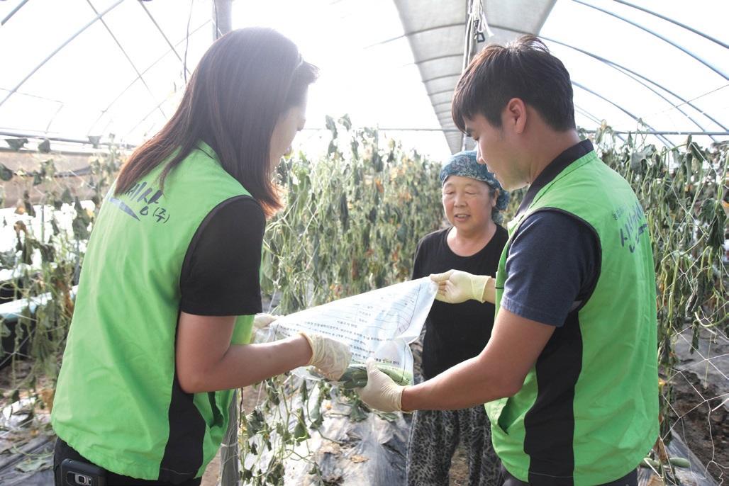 현장에서 출하 전 농약 잔류 검사를 하고 냉장 시스템으로 농산물을 운반한다.