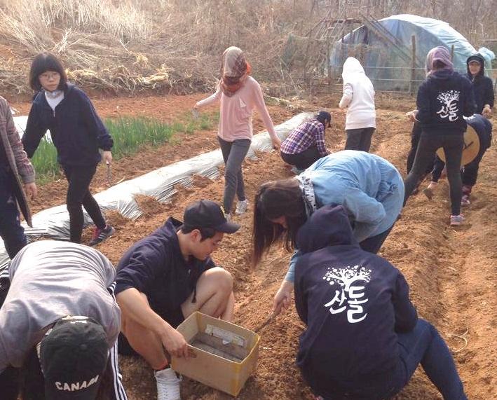 김종수 PD는 청년들을 대상으로 씨앗·땅·농사·GMO·에너지 등을 주제로 배움을 나누고 함께 텃밭을 가꾸는 생태텃밭교육을 4년째 이어오고 있다.