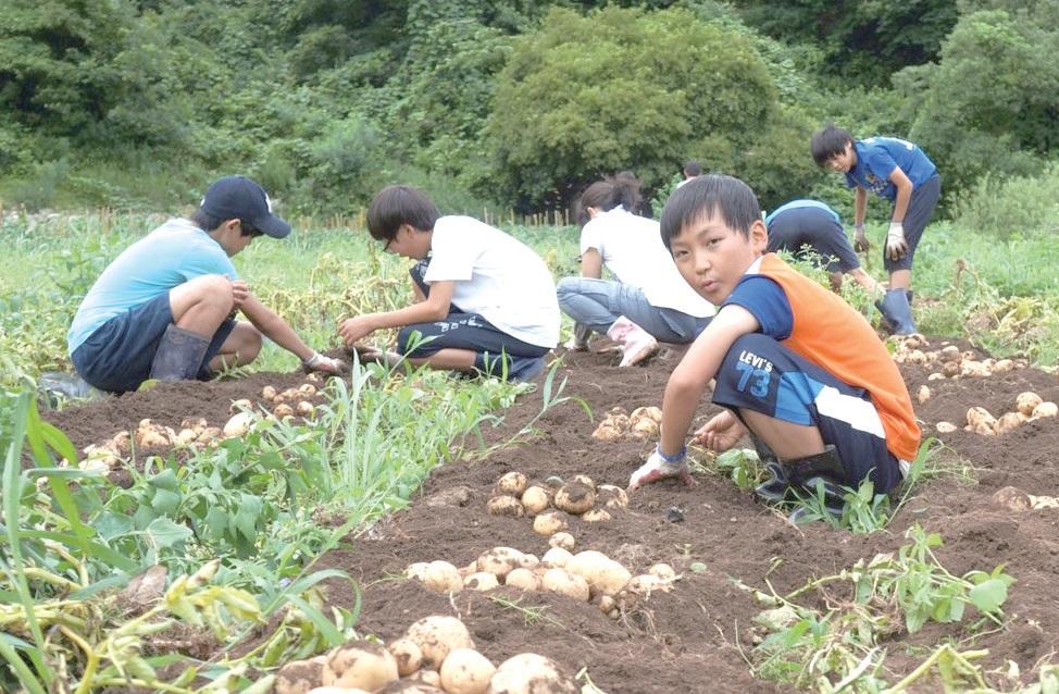 유학생 아이들은 숲과 계곡에서 친구들과 놀고 농사도 체험하며, 농촌과 마을을 배운다. ⓒ소호산촌유학센터