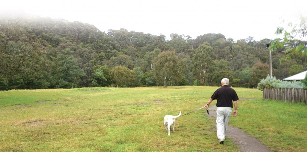 농장의 넓은 잔디밭에서는 파머스 마켓, 야외 결혼식 등 다양한 행사가 열린다.