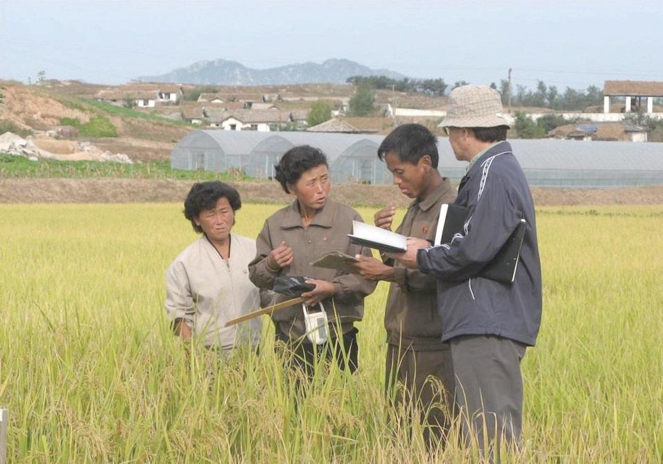 2007~2008년, 통일농수산사업단이 개성지역에서 진행한 남북공동영농사업의 현장. ⓒ통일농수산사업단