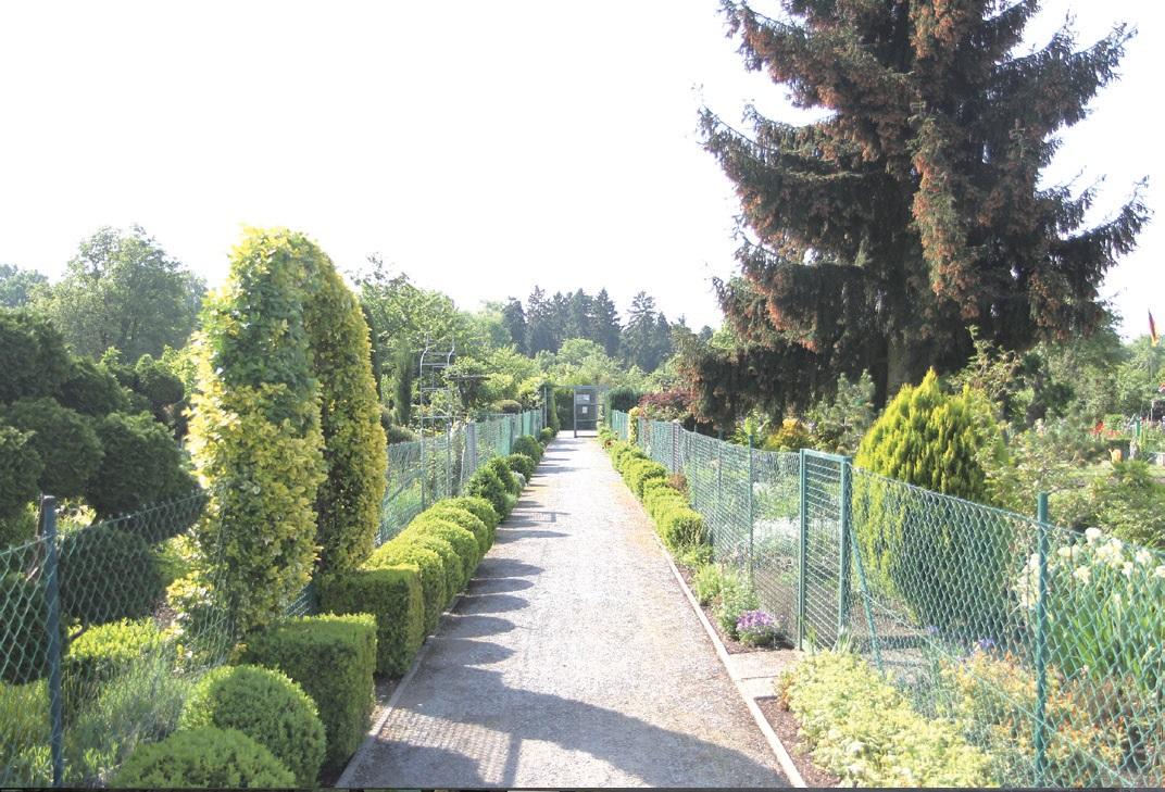 정원의 울타리는 누구나 들여다볼 수 있도록 낮게 설치한다.