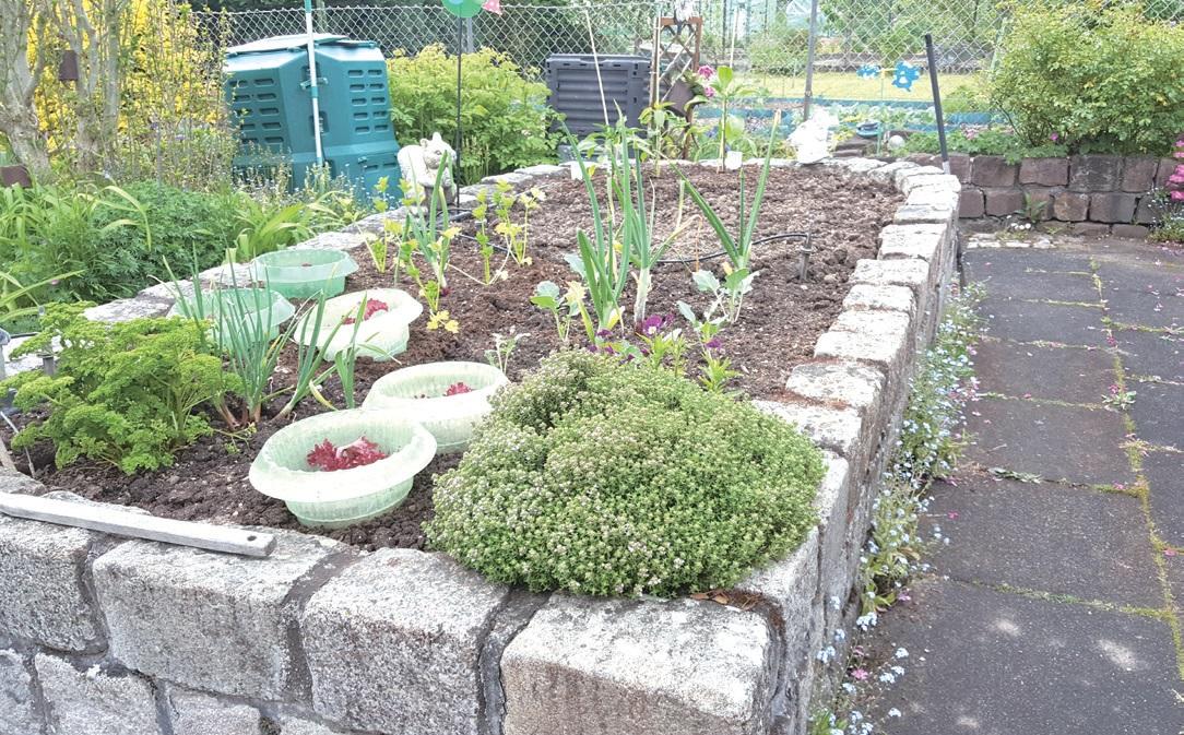 노인이나 장애인이 경작할 수 있도록 높여 놓은 밭. 식물의 성장을 촉진하는 효과도 있다.