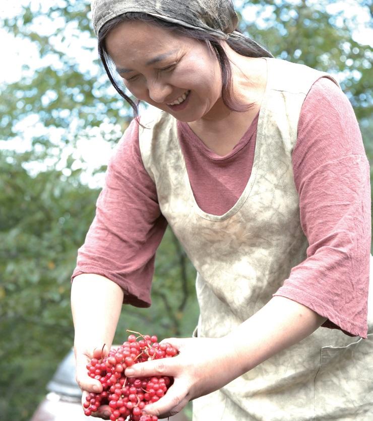 직접 키운 오미자와 산에서 나는 좋은 풀을 그냥 두기 아까워 발효액을 담그기 시작했다. 발효액을 담그고 남은 찌꺼기는 우려내어 다시 밭에 준다. 버리는 게 하나도 없는 자연의 순환이다. Ⓒ김현희