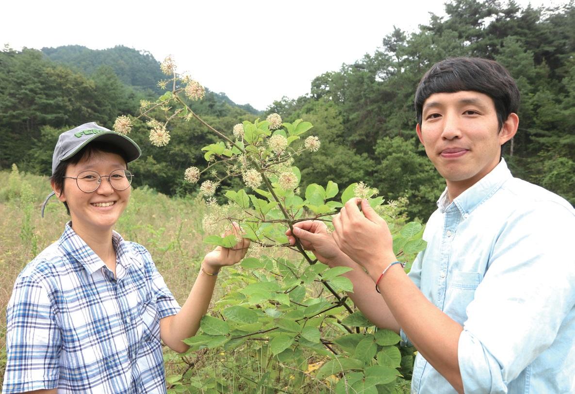 농사를 좋아하는 효정 씨와 약초를 캐는 진우 씨가 만나 '농부와 약초꾼'이 되었다.