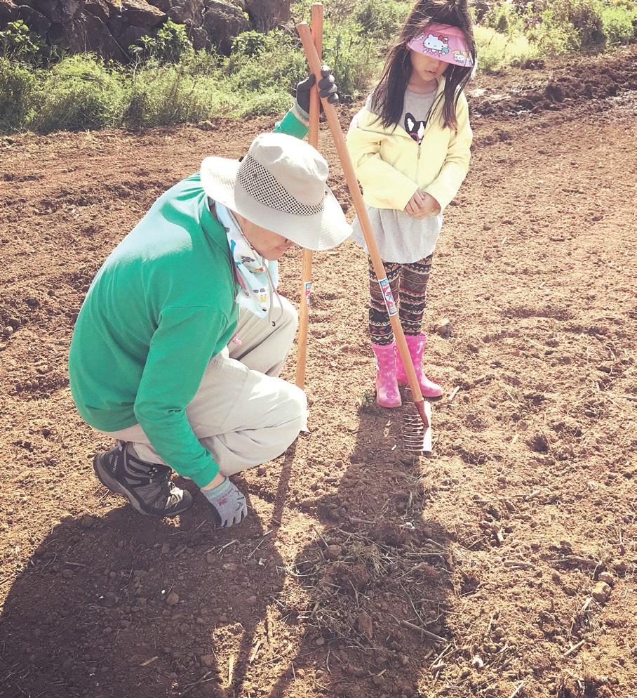 아이와 함께 농장을 찾았다. 올봄, 나는 첫 씨앗을 뿌렸다. ⓒ홍창욱