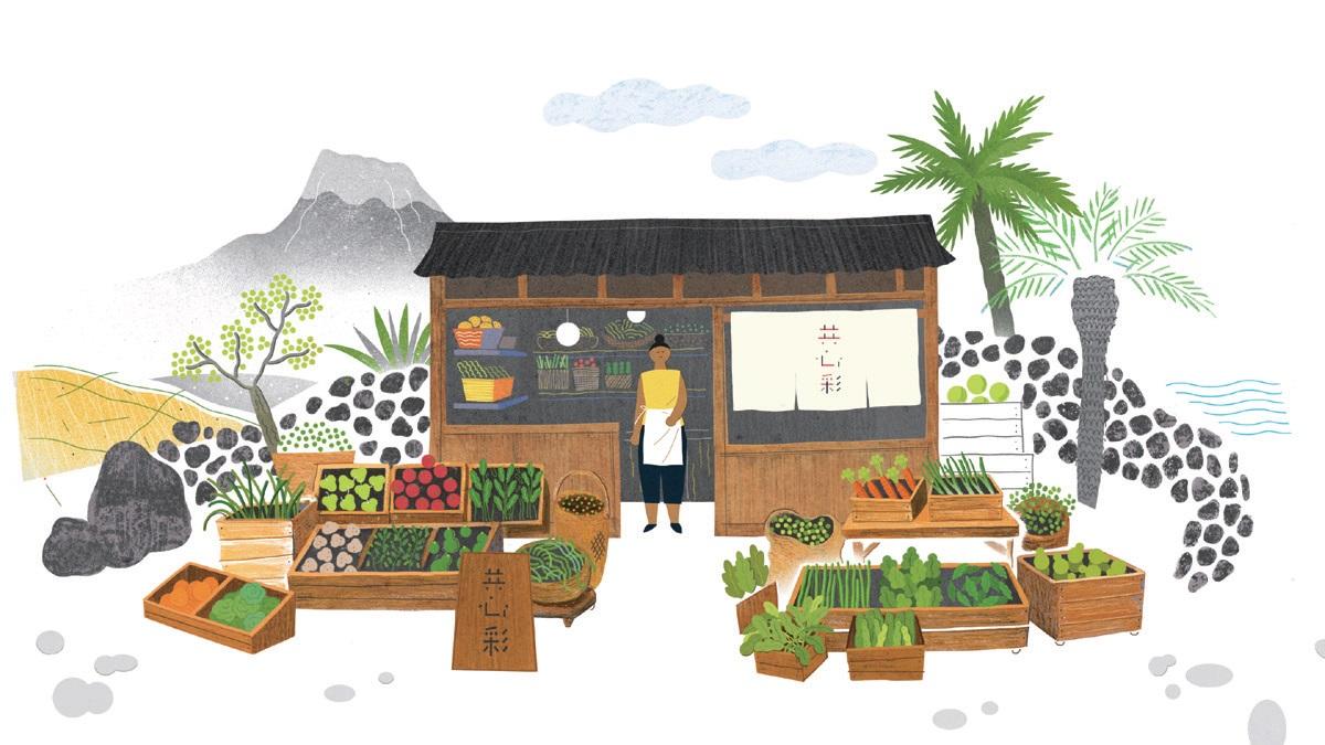 공심채는 제주를 대표하는 사회적 농업회사로 성장할 것이다. ⓒ공심채농업회사법인