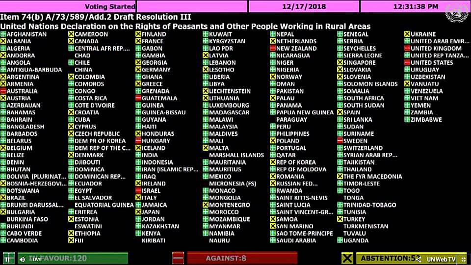 유엔농민권리선언이 지난해 12월 17일 미국 뉴욕에서 열린 유엔 제73차 총회에서 찬성 121표, 반대 8표, 기권 54표로 회원국들의 압도적인 지지를 받아 통과됐다. 우리나라 정부는 농민권리선언 채택 과정에서 기권으로 일관했다. 유엔TV 화면 캡처