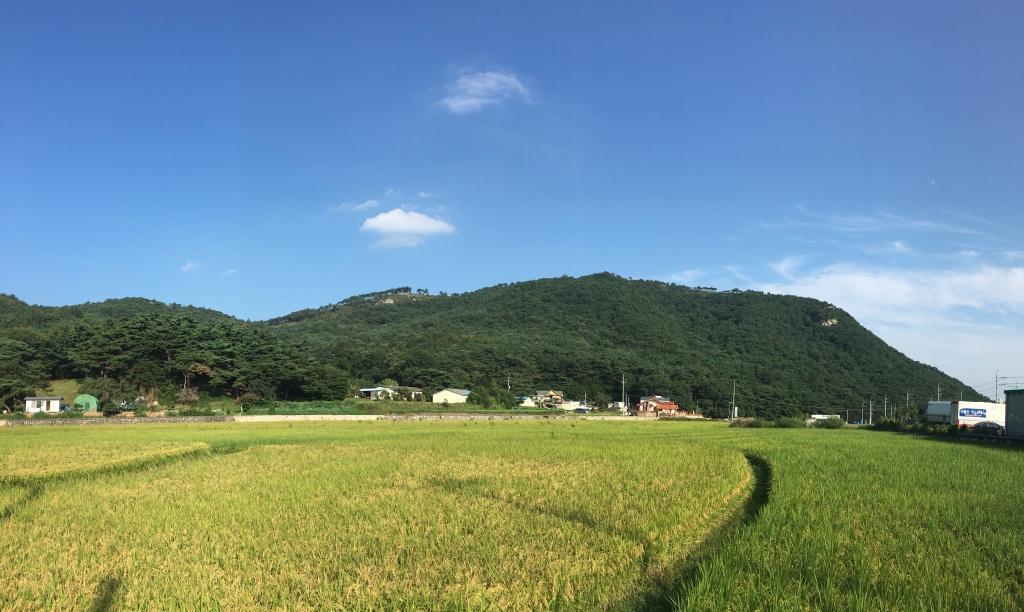 울산 울주군 상북면의 아름다운 농촌 풍경. ⓒ노진경