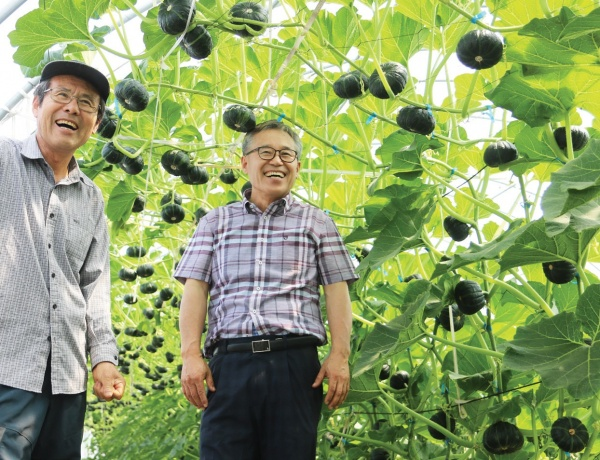 전 해남군에 미니밤호박을 도입, 전파해 고소득 작물로 키운 황보인식 지도사(오른쪽)와 15년째 밤호박 농사를 짓는 정성채 씨.
