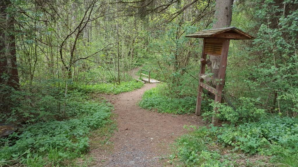 자연 산책길에는 숲에 살고 있는 동식물이 무엇인지 알 수 있는 안내판이 곳곳에 있다.