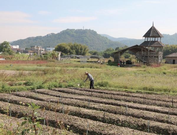 중국 중산 치시마을 풍경. 이번 연수 지역은 쌀의 나라들이다. ⓒ대산농촌재단