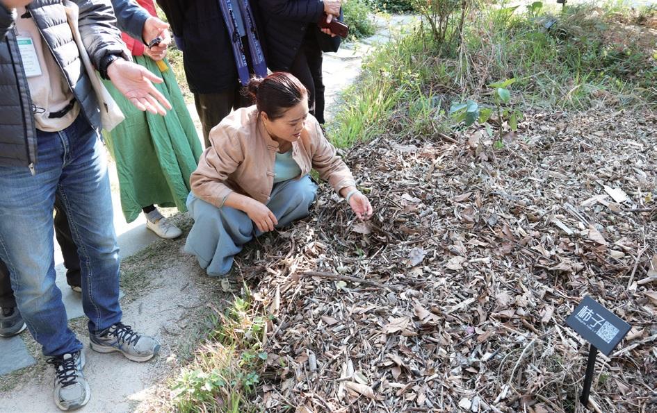 나뭇잎, 잔가지 등은 퇴비로 활용한다.