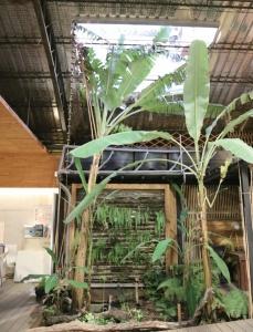 수합원 내 작은 정원. 수합원에서는 빗물을 받아 사용한다.