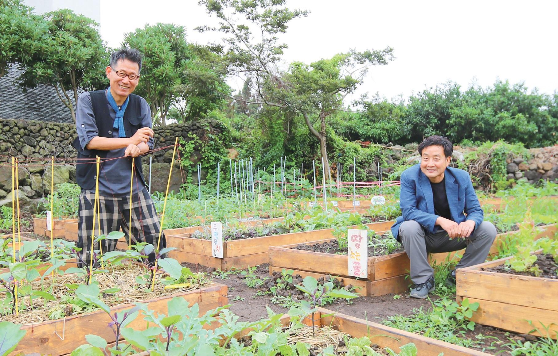 제주담을' 텃밭에 나란히 선 강순원 씨(오른쪽)와 홍천기 씨.