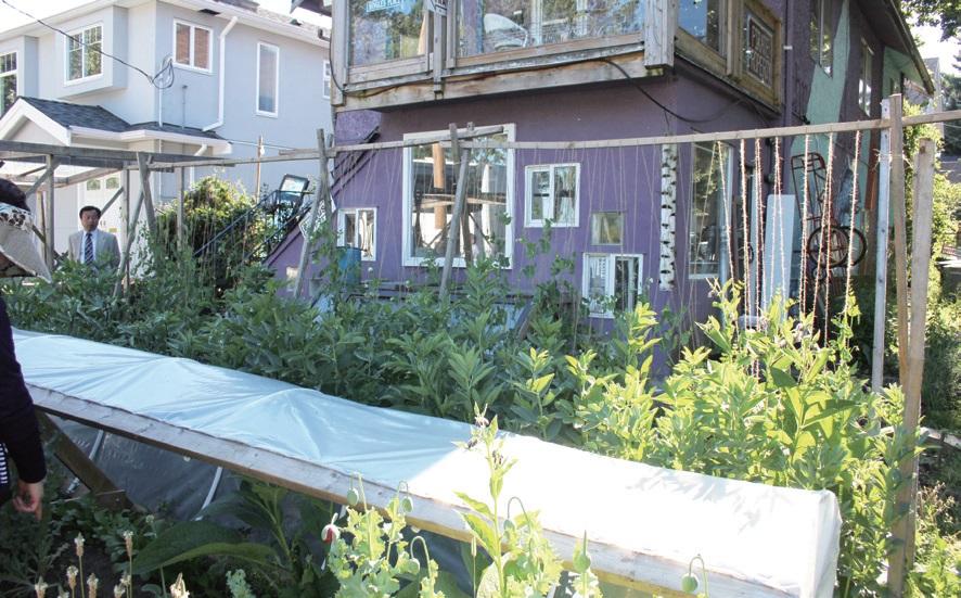 일반 주택의 마당을 빌려 농작물을 재배하여 지역주민에게 공급한다.