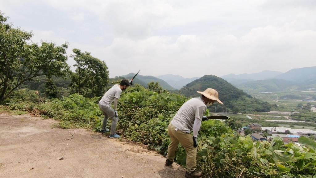 전남 순천에서 '마을 맥가이버'로 활동하는 귀농인 김현철 씨(오른쪽)와 이재덕 기자가 화지마을 뒷길에서 예초작업을 벌이고 있다.  길 너머 산 아래로 보이는 마을 풍광이 기가 막혔다. ⓒ경향신문 석예다 PD